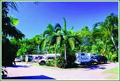 Tropical Hibiscus Caravan Park - Accommodation Whitsundays