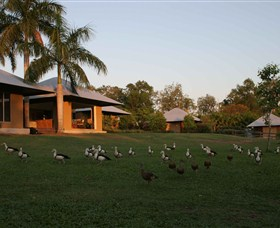 Feathers Sanctuary - Accommodation Whitsundays