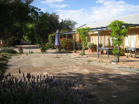 Peechabella Vineyards Bed  Breakfast - Accommodation Whitsundays