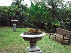 Bangalow Retreat - Accommodation Whitsundays