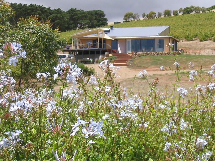 The Blue Grape Vineyard Accommodation - Accommodation Whitsundays