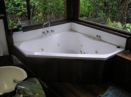 The Canopy Rainforest Tree Houses and Wildlife Sanctuary - Accommodation Whitsundays