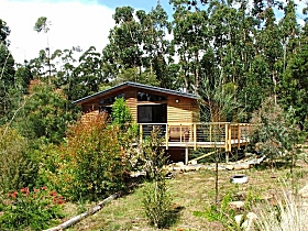 Southern Forest Accommodation - Accommodation Whitsundays