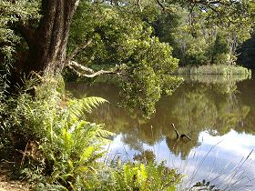Weldborough Camping Ground - Accommodation Whitsundays