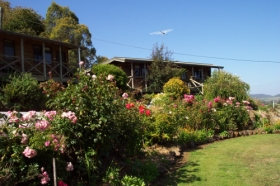 Mole Creek Holiday Village - Accommodation Whitsundays