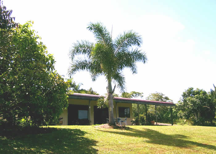 Daintree Mountain View Retreat and Vanilla Beans - Accommodation Whitsundays