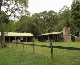 Tree Fern Lodge - Accommodation Whitsundays