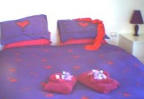 Aloomba Lavender - Accommodation - Accommodation Whitsundays