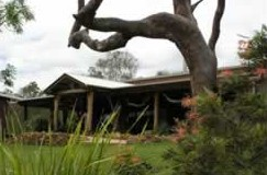 The Hollow Log Country Retreat - Accommodation Whitsundays