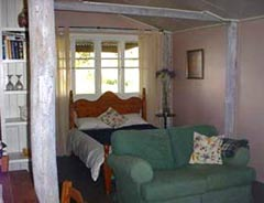 Bunnyconnellen Olive Grove and Vineyard - Accommodation Whitsundays