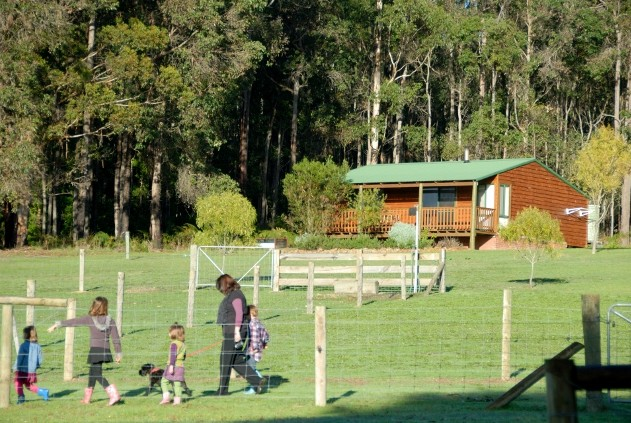 Diamond Forest Farm Stay - Accommodation Whitsundays