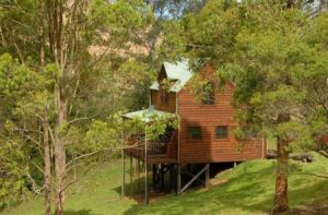 Hookes Creek Forest Retreat - Accommodation Whitsundays