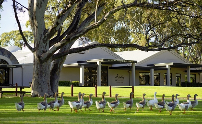 Serafino McLaren Vale - Accommodation Whitsundays