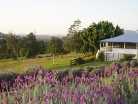 Blue Ridge Lavender Farm And Retreat - Accommodation Whitsundays