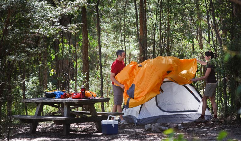 Bald Rock campground and picnic area - Accommodation Whitsundays