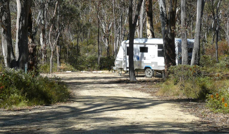 Blatherarm campground and picnic area - Accommodation Whitsundays