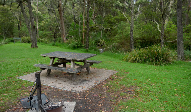Chaelundi campground - Accommodation Whitsundays