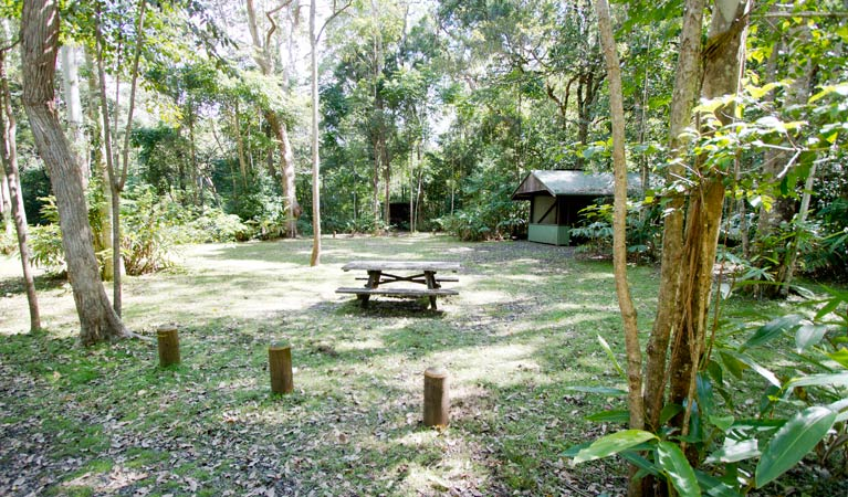 Iron Pot Creek campground - Accommodation Whitsundays