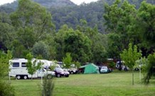 Sandy Hollow Tourist Park - Sandy Hollow - Accommodation Whitsundays