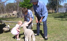 Yarralong BnB and Farm Stay - Accommodation Whitsundays
