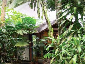 Heritage Lodge and Spa - In the Daintree - Accommodation Whitsundays