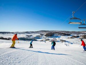The Coachman Ski Lodge - Accommodation Whitsundays