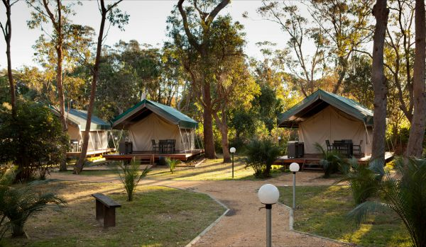 NRMA Myall Shores Holiday Park - Accommodation Whitsundays