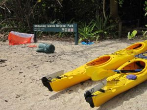 Molle Island National Park Whitsundays National Park Camping Ground - Accommodation Whitsundays