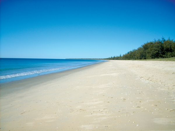 Woodgate Beach Tourist Park - Accommodation Whitsundays