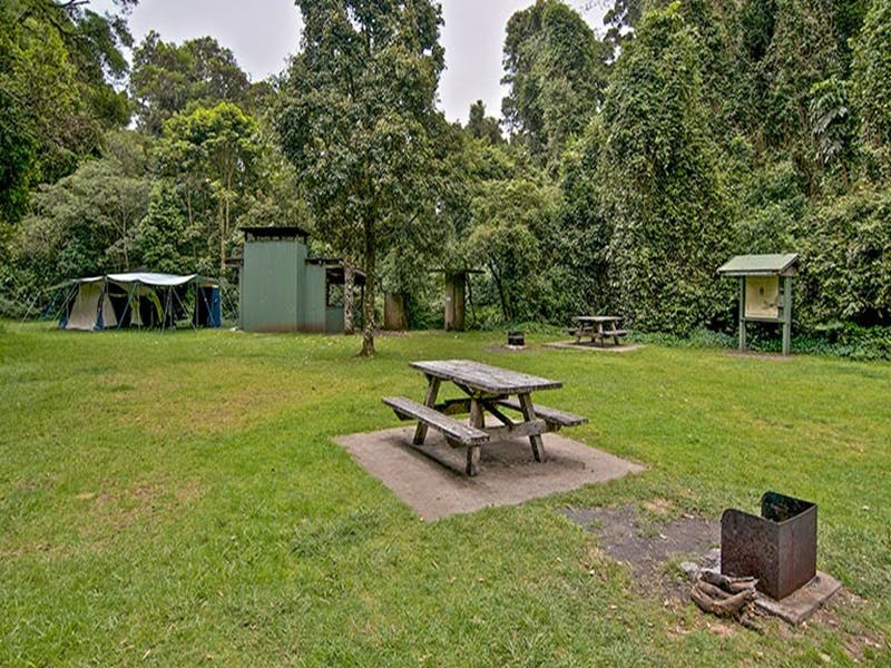 Forest Tops campground - Accommodation Whitsundays