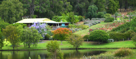 Pemberton Lavender and Berry Farm Cafe and Cottages - Accommodation Whitsundays