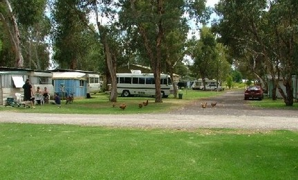 Harvey Rainbow Caravan Park - Accommodation Whitsundays