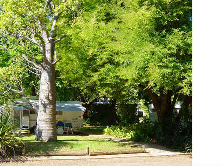 Town Caravan Park - Accommodation Whitsundays