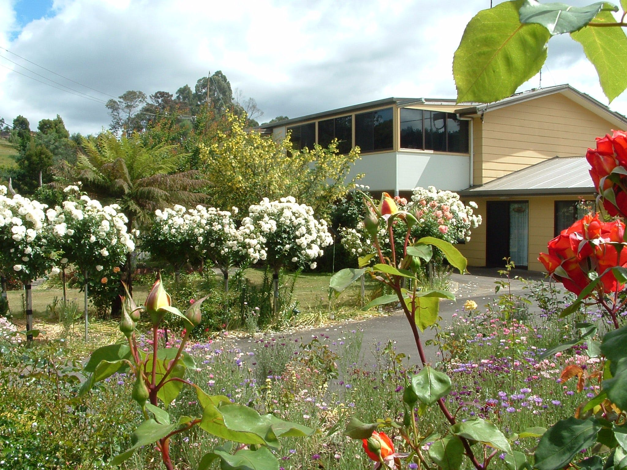 North East Restawhile Bed and Breakfast - Accommodation Whitsundays