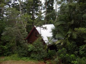 Turkeys Nest Rainforest Cottages Mt Glorious - Accommodation Whitsundays