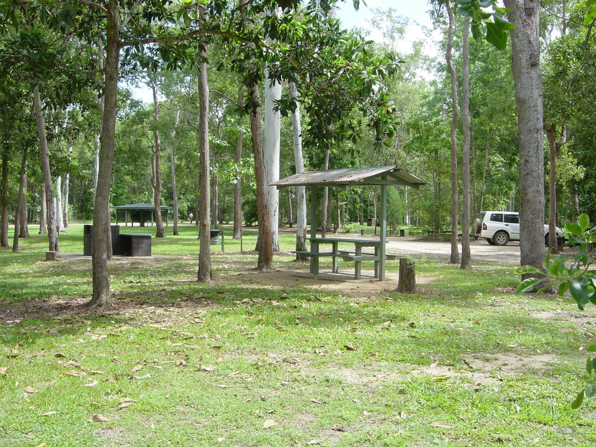 Broadwater camping area Abergowrie State Forest - Accommodation Whitsundays