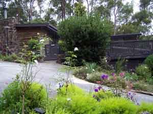 Sunway Farm B and B and Tours - Accommodation Whitsundays