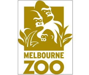 Melbourne Zoo - Accommodation Whitsundays