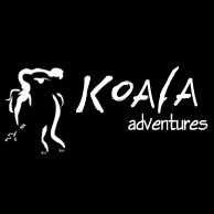 Koala Adventures - Accommodation Whitsundays