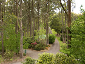 Mount Lofty Botanic Garden - Accommodation Whitsundays