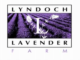 Lyndoch Lavender Farm and Cafe - Accommodation Whitsundays