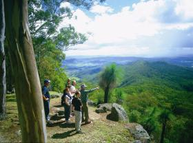 Gold Coast Hinterland Great Walk - Accommodation Whitsundays