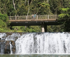Malanda Falls Conservation Park - Accommodation Whitsundays