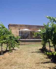 Shantell Vineyard - Accommodation Whitsundays