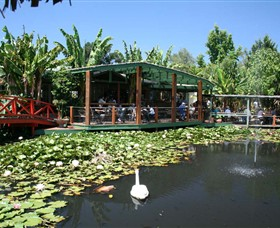 Blue Lotus Water Garden - Accommodation Whitsundays