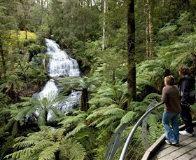 Great Otway National Park - Accommodation Whitsundays