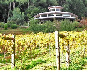 Peveril Vineyard/Beechy Berries - Accommodation Whitsundays