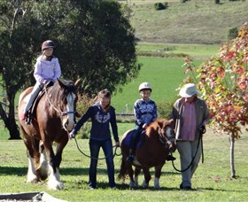 Bathurst Farm Experience - Accommodation Whitsundays