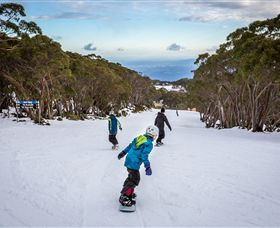 Mt Baw Baw Alpine Resort - Accommodation Whitsundays