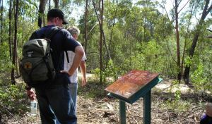 Finchley cultural walk - Accommodation Whitsundays